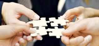¿A qué se llama inteligencia colectiva?