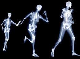 Actividad física detiene los síntomas de la osteoporosis