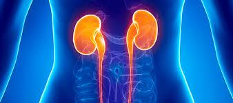 Adultos jóvenes en riesgo de enfermedad renal