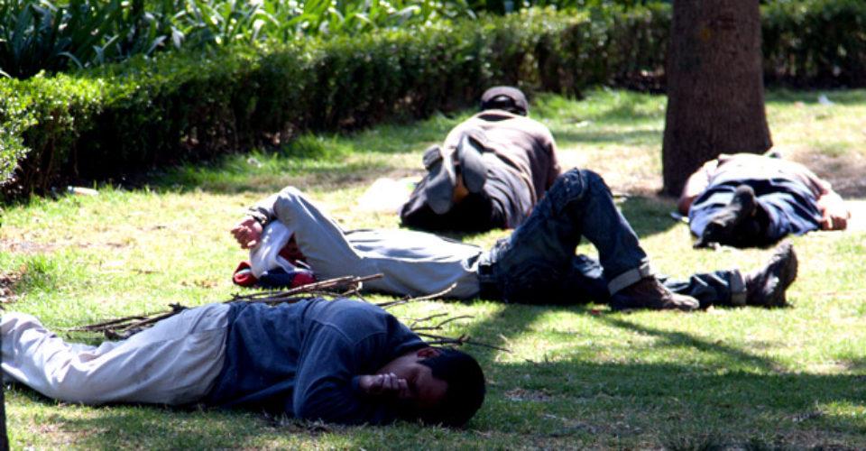 """AMLO dará empleo a 2.6 millones de """"ninis"""""""