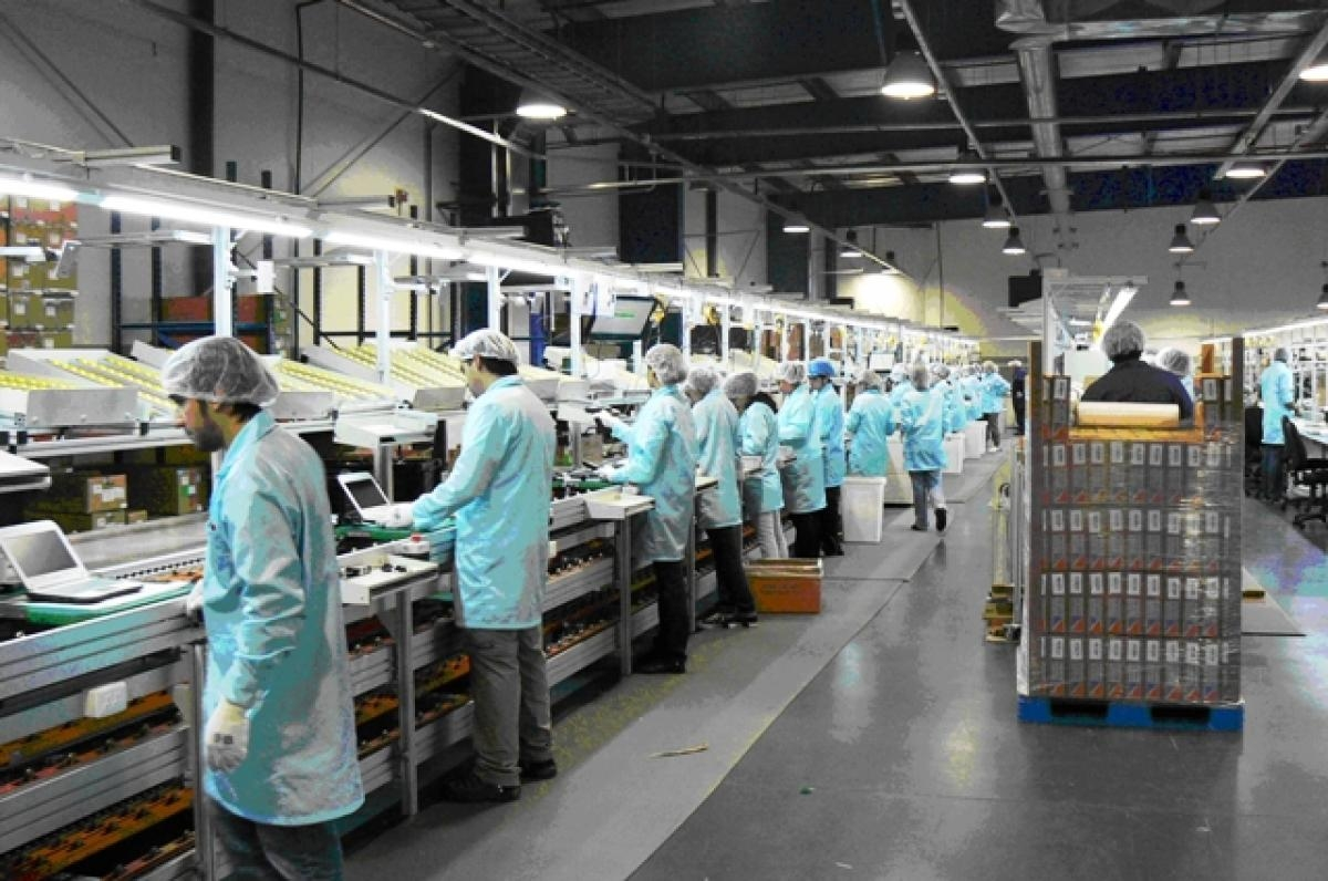 Aumenta personal ocupado en industria manufacturera