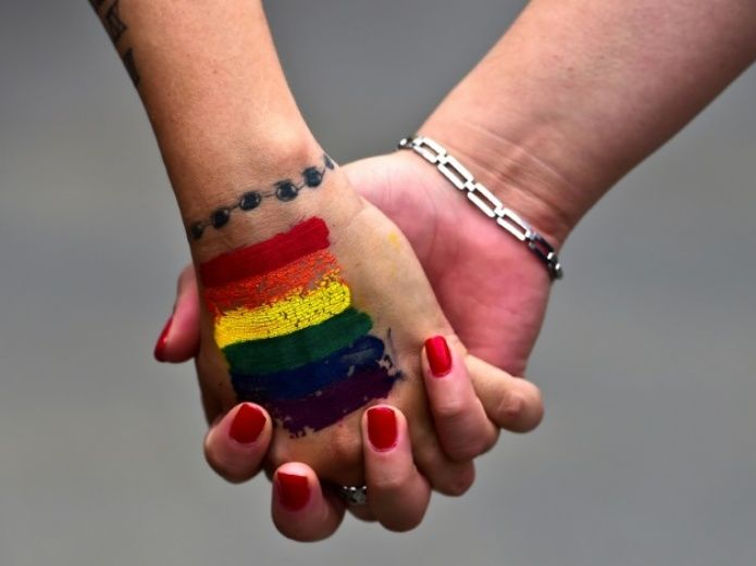 Busca Senado dar mismos derechos en salud a parejas gay