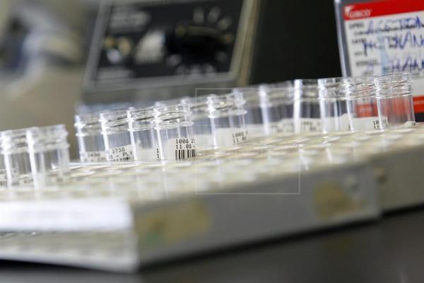 Buscan en la UNAM combatir bacterias con inmunoterapias