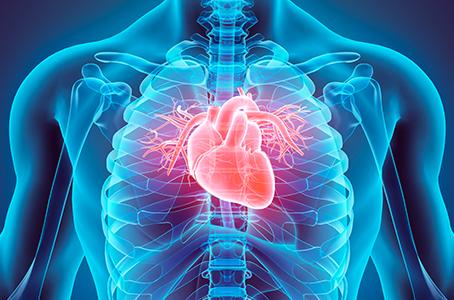 Cada segundo muere una persona en el mundo por enfermedad cardiovascular