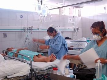 Chikungunya tunde a 100 mil trabajadores ...y pega al IMSS