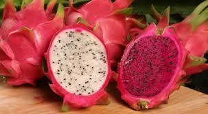 Comer pitahayas podría prevenir el cáncer