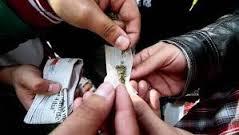 Consumo de marihuana afecta funciones motoras y psicosociales