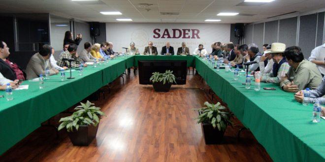 Denuncian que habrá despidos masivos en la Sader