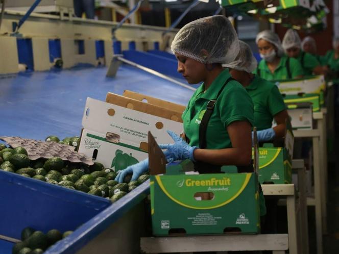 Economía mexicana al abismo: se contraerá 10.5%: FMI