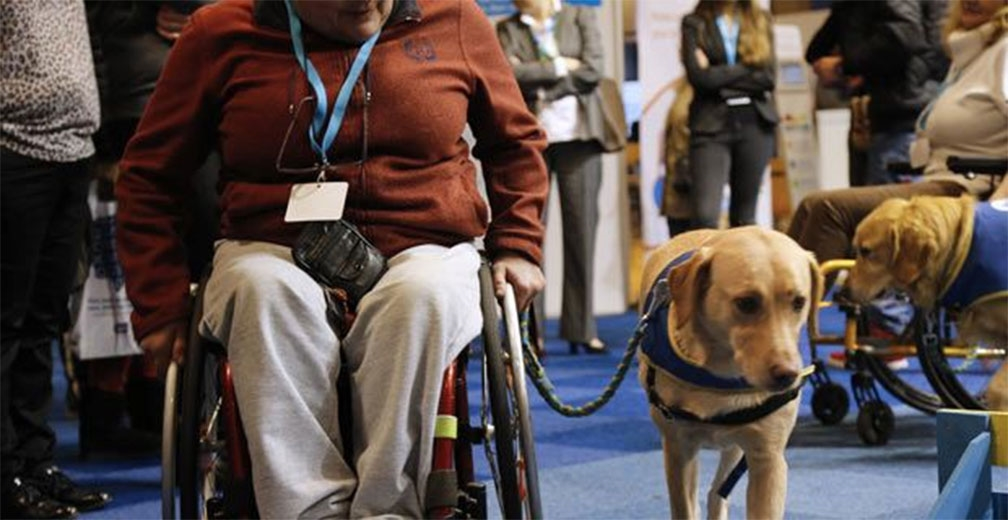 El IMSS atiende a 6.3 millones de discapacitados