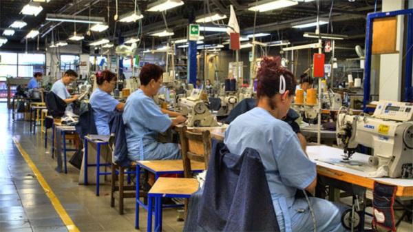 Empleo en industria manufacturera creció 4% anual en julio