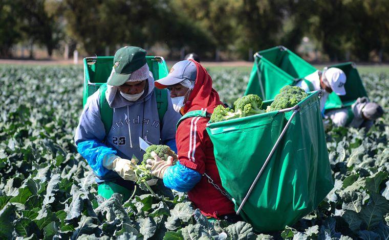 EU dará 32 millones de dólares para asistencia laboral en México
