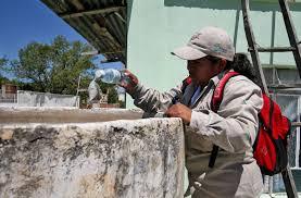 Exhorta Ssa acciones contra dengue