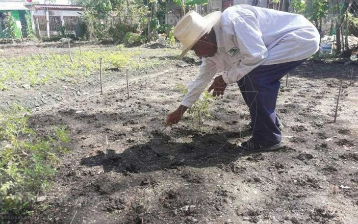 Habrá empleo para 60 mil campesinos en Tabasco: AMLO