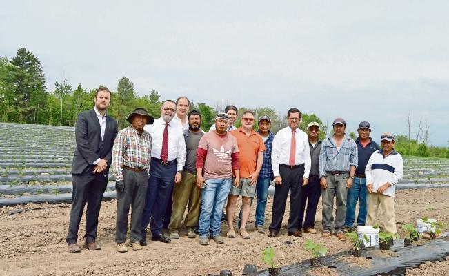 Impulsa STPS programa laboral de mexicanos en Canadá