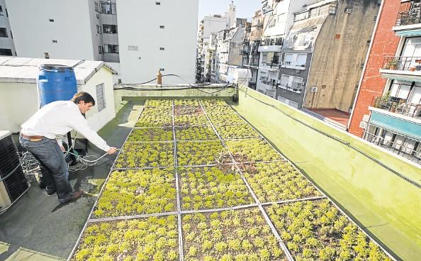 Impulsan empleos relacionados con el medio ambiente