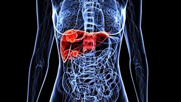 IMSS adquiere cura de hepatitis C