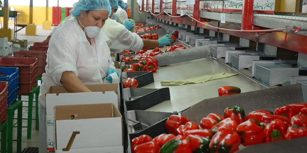 IMSS llega a los 20 millones de trabajadores inscritos