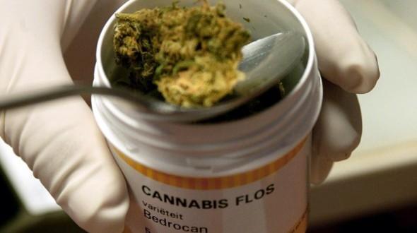 Juez permite importación de medicina de cannabis