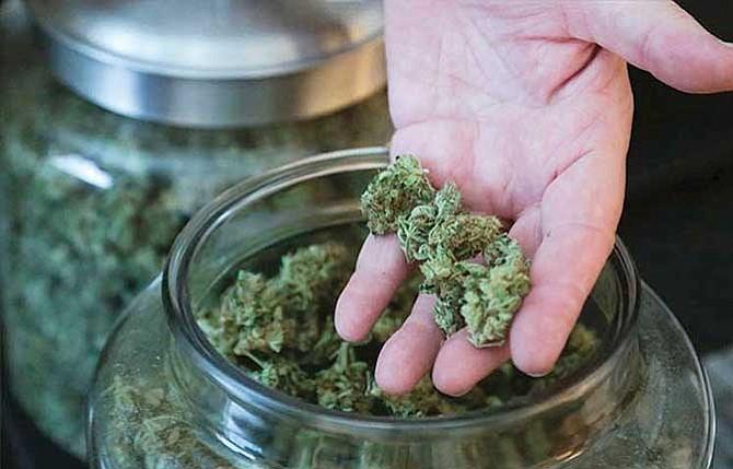 Legisladores piden debate serio sobre mariguana legal