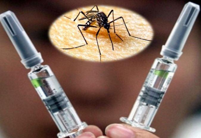 Llega a México vacuna contra dengue