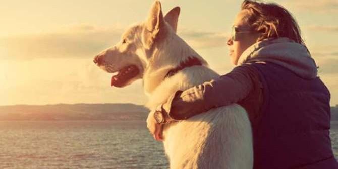 Mascotas benefician salud física y emocional