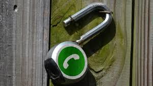 Mexicanos pasan 5 horas diarias en WhatsApp