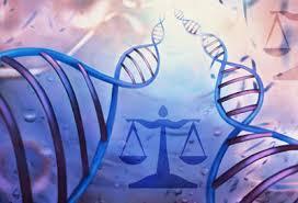 México avanza en materia de bioética