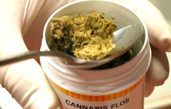 Obtienen licencia para mariguana con fines medicinales