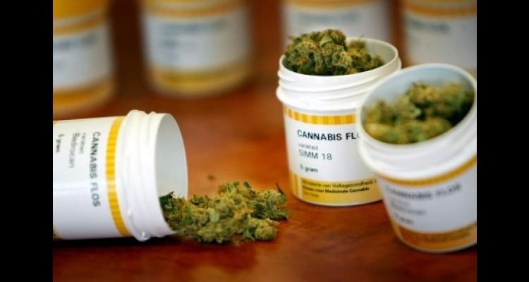 Prevén, ahora sí, cannabis medicinal