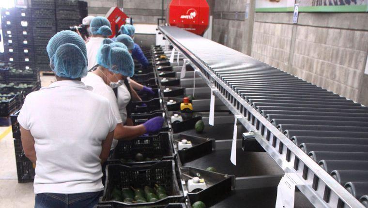 STPS pone en marcha Procuraduría digital para trabajadores
