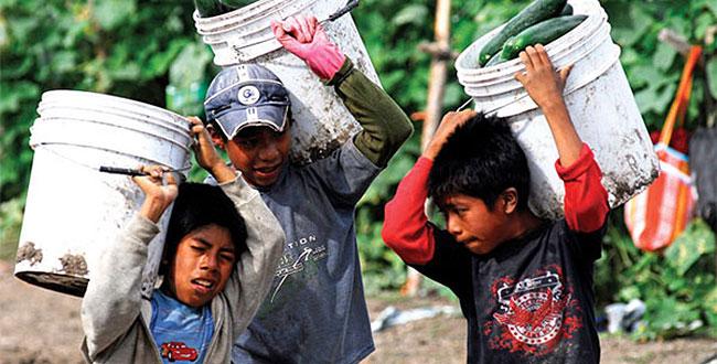 Trabajan 2 millones de menores en México