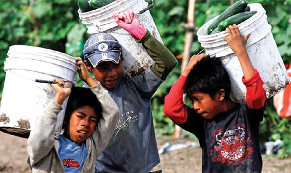Tratado comercial prohibe que naciones exploten laboralmente a los niños