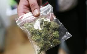 Urgen a EPN abrirse a legalización de mariguana