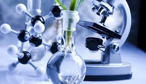 Va Cofepris a buscar innovación Biomédica
