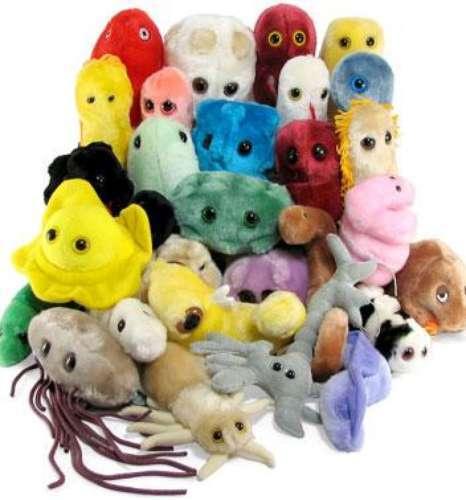 Virus permanecen en los juguetes 24 horas