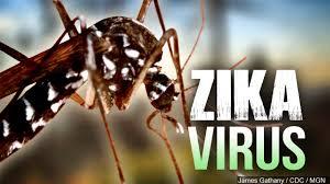Zika puede afectar a 'decenas de miles' de bebés en AL