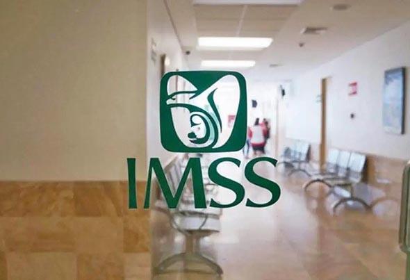 Las claves del nuevo programa piloto del IMSS para trabajadores independientes