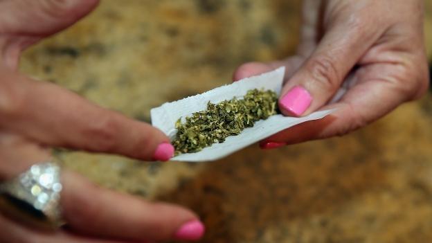 Rechazará Cofepris 189 peticiones para usar mariguana
